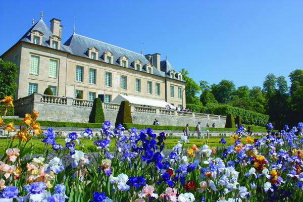 Les Irisiades : le rendez-vous des pouces verts dans le Val d'Oise