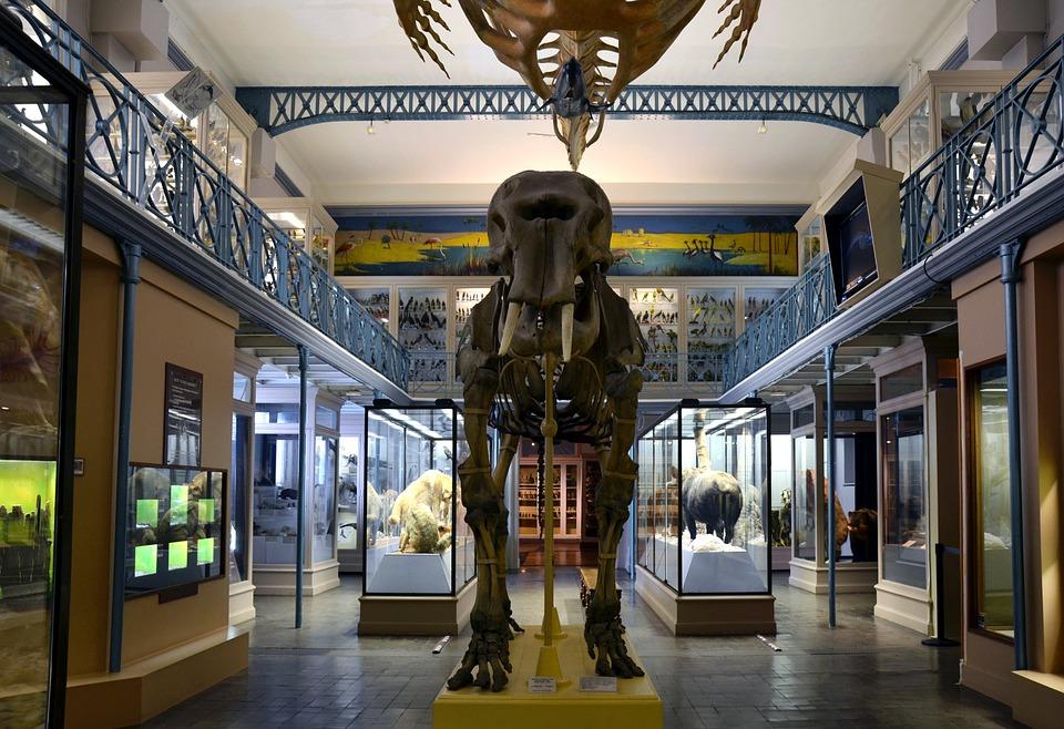 Le Muséum national d'Histoire naturelle et la Banque des Territoires nouent un partenariat dans le cadre du dispositif intracting