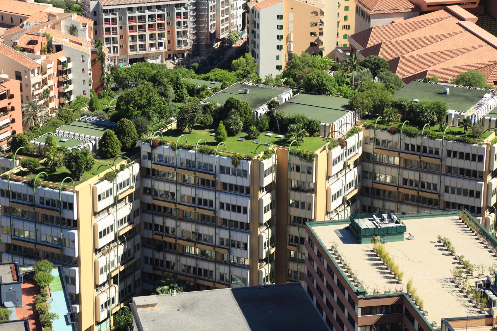 « Nature 2050 » ou comment préserver la biodiversité du Grand Paris