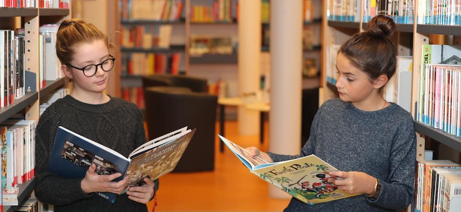 Bibliothèques : La Seine-et-Marne à la chasse aux «zones blanches»