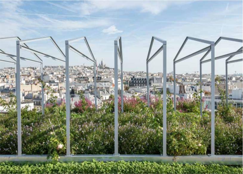 Jacques Ferrier : «Retrouver les vertus du micro-urbanisme»